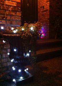 LED Lit Urn