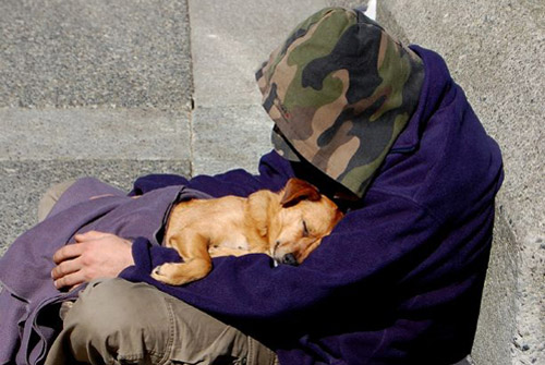homeless boy and dog