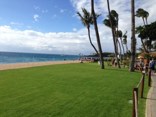 Maui Beach 1