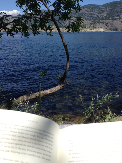 """Me, inhaling """"And The Mountains Echoed"""" at the lake this week"""
